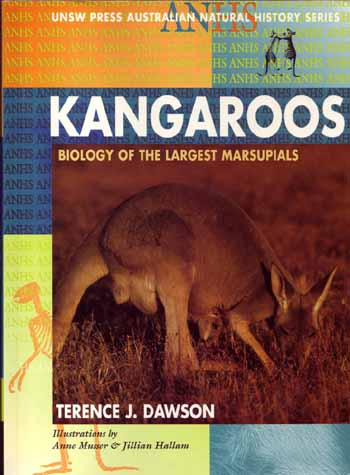 Image for Kangaroos Biology of the Largest Marsupials (UNSW Press Natural History Series)