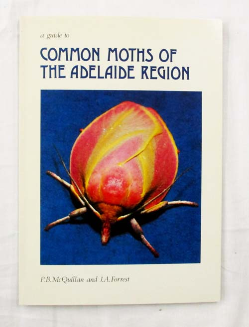 Image for A Guide to Common Moths of the Adelaide Region