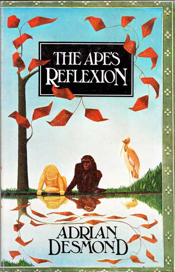 Image for The Apes Reflection