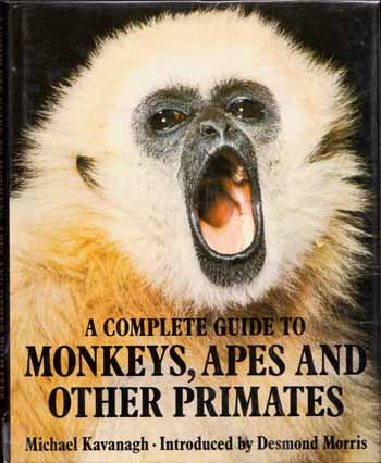 Image for A Complete Guide to Monkeys, Apes and Other Primates