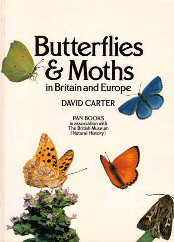 Image for Butterflies and Moths in Britain and Europe