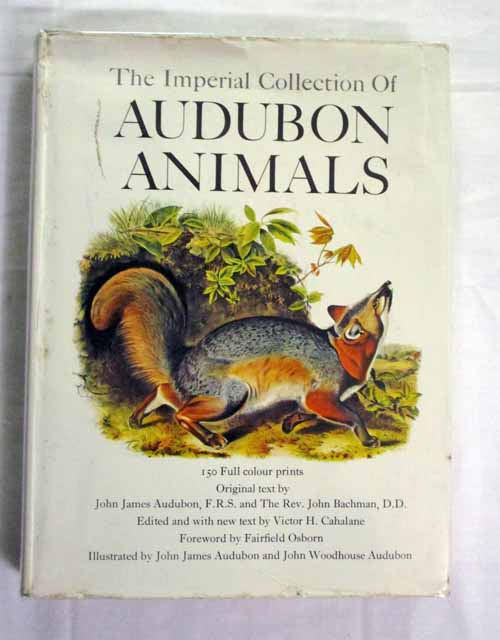 Image for The Imperial Collection of Audubon Animals The Quadrupeds of North America