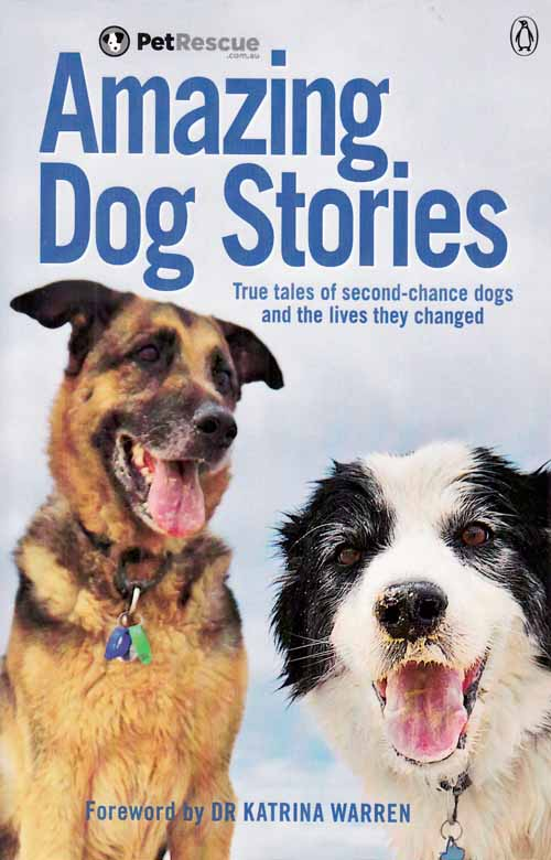 Image for Amazing Dog Stories.  True tales of second-chance dogs and the lives they changed