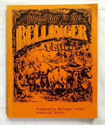 Image for Pioneering in the Bellinger Valley