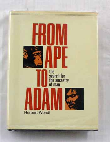 Image for From Ape to Adam. The Search for the Ancestry of Man