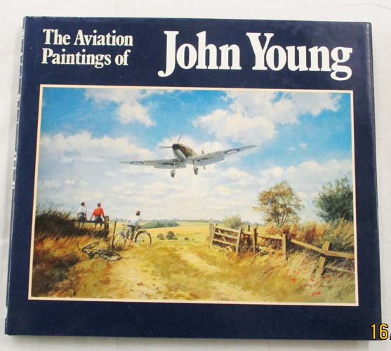 Image for The Aviation Paintings of John Young