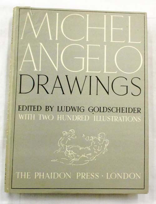 Image for Michelangelo Drawings