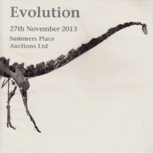 Image for Evolution.  27th November 2013.  Summers Place Auctions Limited.