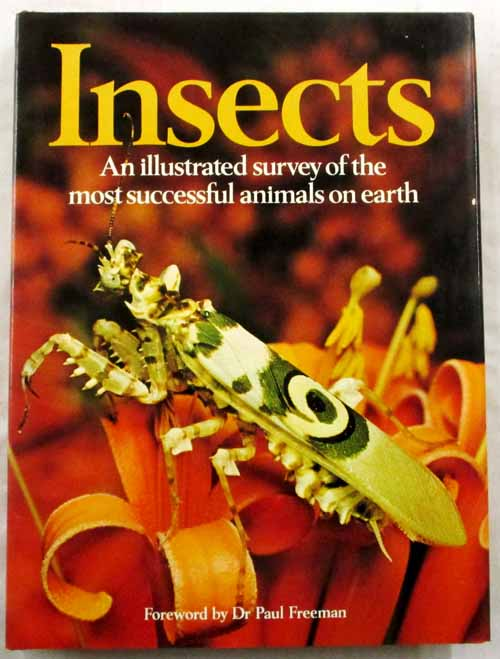 Image for Insects An Illustrated Survey of the Most Successful Animals on Earth