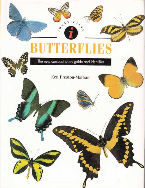 Butterflies.  The New Compact Study guide and identifier